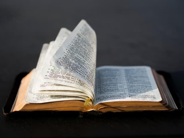 如何發展提案?《好萊塢提案聖經》選摘